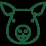 pig-head (1)